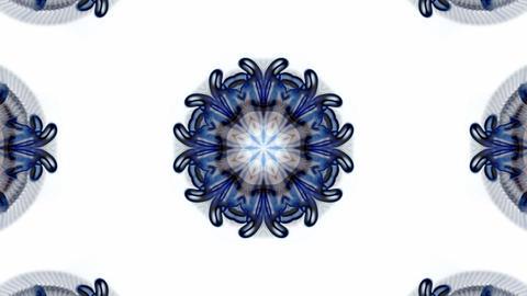 Gorgeous oriental religion lotus flower... Stock Video Footage