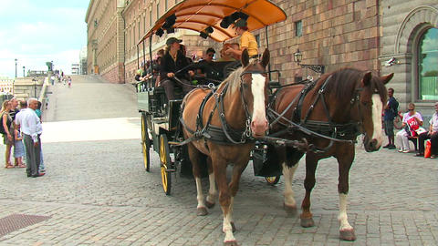 Horse cart 1 Stock Video Footage