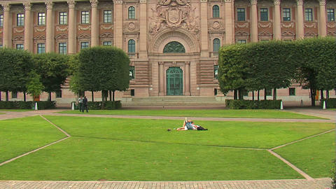 Lovers on the grass 2 Stock Video Footage