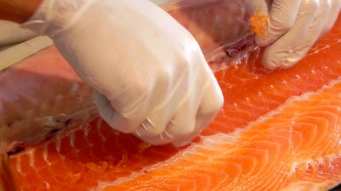 Japanese gourmet asian seafood Restaurant food Chef preparing sushi salmon fish Footage