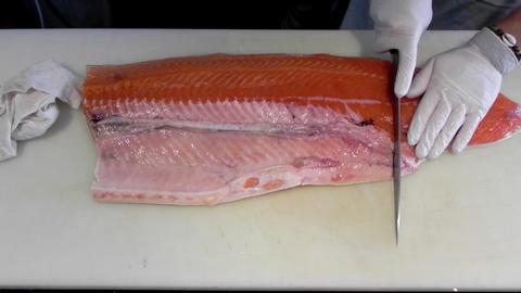 Japanese gourmet asian seafood Restaurant food Chef preparing sushi salmon fish Live Action