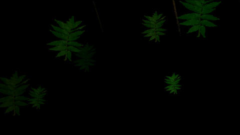 Animation of green... Stock Video Footage