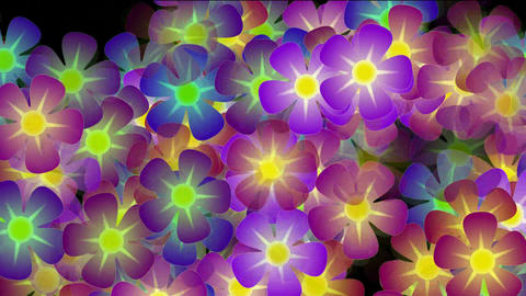 purple wild flower background,violet,flicker,Festivals,romance,romantic,bloom,lush,prosperous,welcom Animation