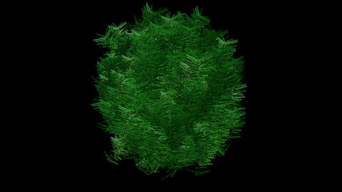 Tree shaking digital animation,material,texture,Fireworks,romance,romantic,pattern,symbol,dream,visi Animation