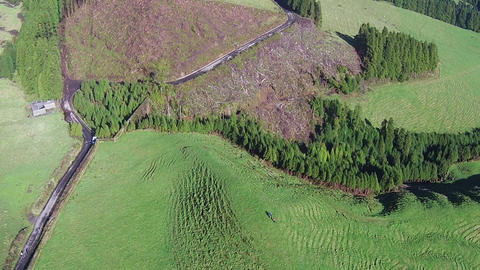 Flying Over The Agricultural Green Fields stock footage