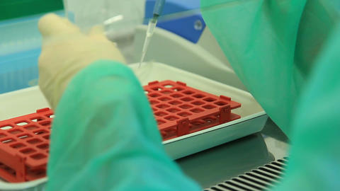 Genetic Laboratorie: Examination Of Samples stock footage