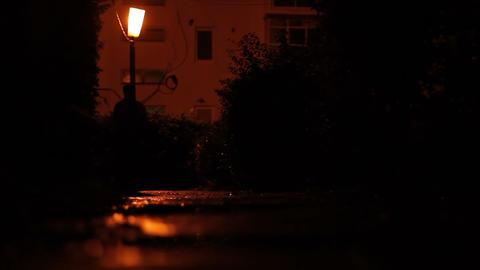 Besides Lantern Night Silhouettes Footage