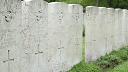 British WWII Pilots Memorial Footage