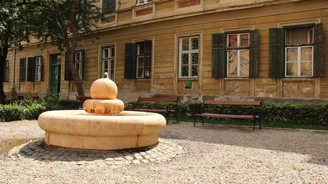 Fountain And Benches In A Baroque Garden stock footage