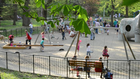Kids and Parents at Playground Footage