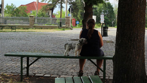 Little Dog and Owner Sitting Footage