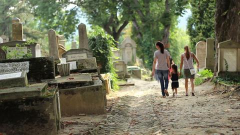 Little Girl Walking in Cemetery Footage