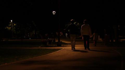 Nighttime Park Promenade Footage