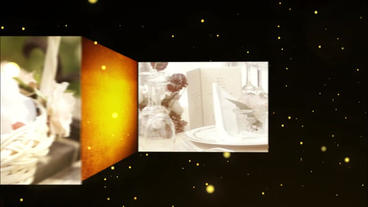 Particle Gold Wedding Photo Movie stock footage