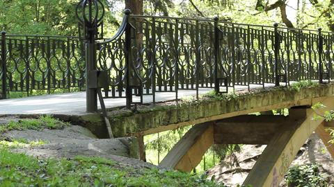 Pedestrian Large Bridge in the Park Footage