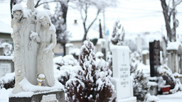 Snowing on Cemetery Footage