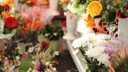 Street Flowers for Sale Footage