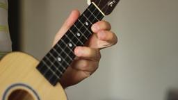 Ukulele Musical Instrument Footage