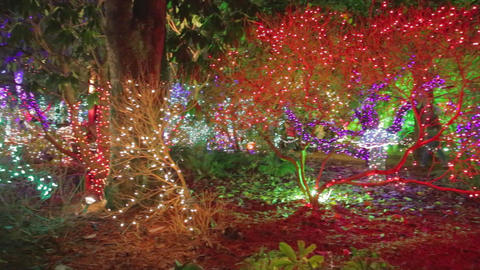 Pan - A Colorful Light At Vandusen Botanical Garde stock footage