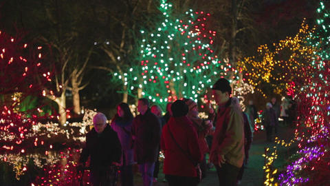 Canadians at colorful Vandusen festival of lights  Footage