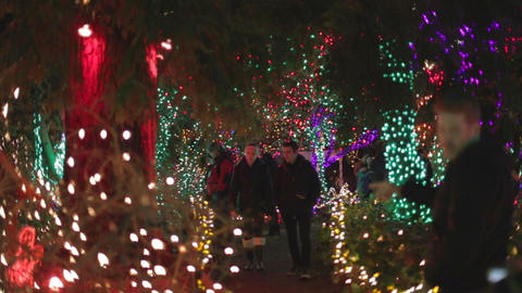 Vancouver Vandusen christmas lights - couple walki Footage