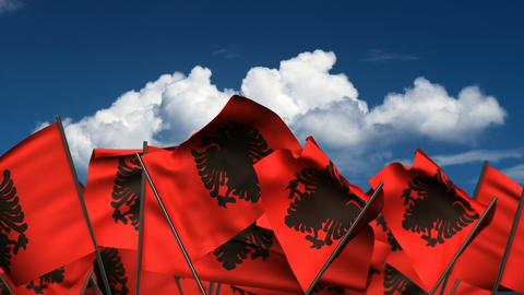 Waving Albanian Flags stock footage