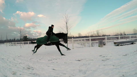 SLOW MOTION: Female galloping with big horse in wi Footage