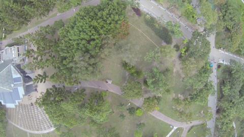 birdeye aerial pan - of Daan Park Footage