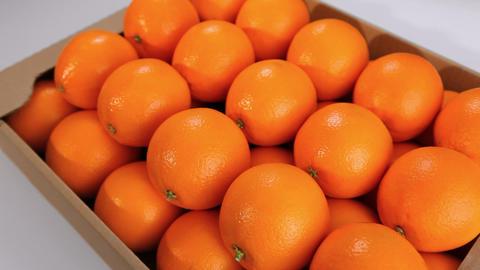 Beautiful oranges box Footage