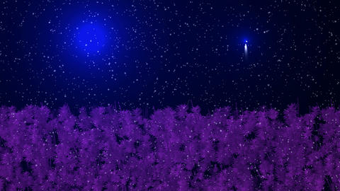 Falling snow and forest,shine stars at night,psychedelic landscape,like as xanadu and fairyland Animation