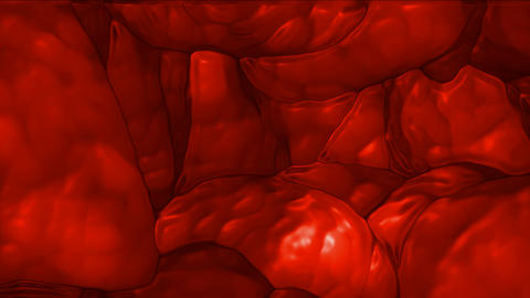 3d blood cells in... Stock Video Footage