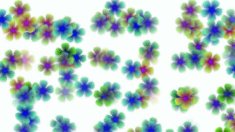 color wild flower flow background,scrub glass... Stock Video Footage