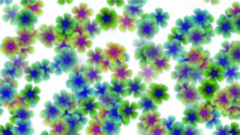 color wild flower flow background,scrub glass style.Vegetables,bloom,floral,petals Animation