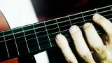 Musician and Acoustic Guitar 13 playing closeup stylized artcolored Footage