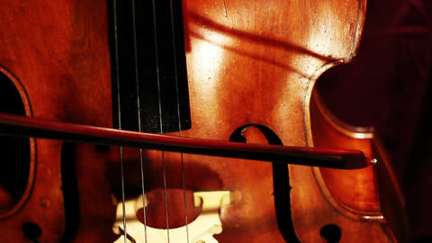 Musician and Double Bass 01 Stock Video Footage