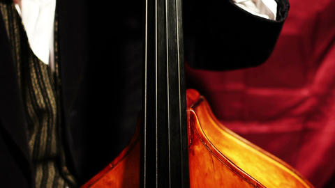 Musician and Double Bass 04 Footage