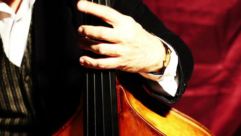 Musician and Double Bass 04 Stock Video Footage