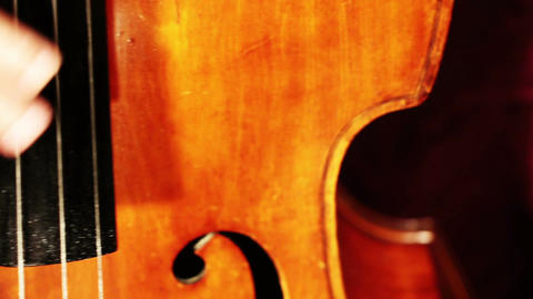 Musician and Double Bass 16 playing Stock Video Footage