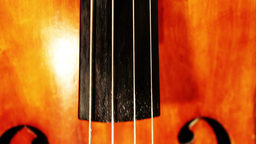 Musician and Double Bass 18 holding instrument tilts Stock Video Footage