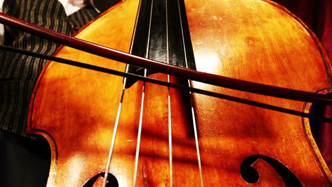 Musician and Double Bass 20 playing wide low angle Stock Video Footage