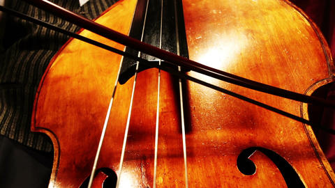 Musician and Double Bass 20 playing wide low angle Footage
