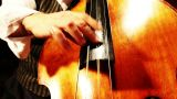 Musician And Double Bass 22 Playing Jazz Wide Low Angle stock footage