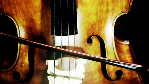 Musician and Double Bass 26 stylized artcolored Stock Video Footage