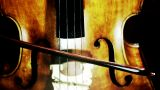 Musician and Double Bass 26 stylized artcolored Footage