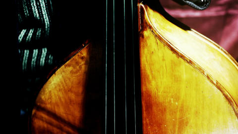 Musician and Double Bass 28 stylized artcolored Stock Video Footage