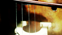 Musician and Double Bass 30 extreme closeup stylized... Stock Video Footage
