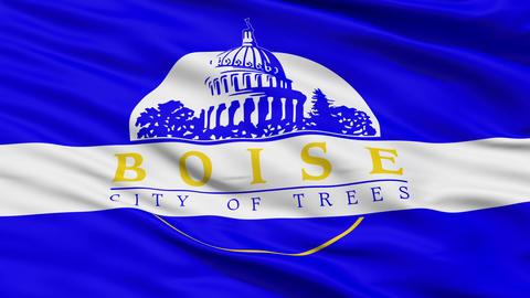 Close Up Waving National Flag of Idaho Animation