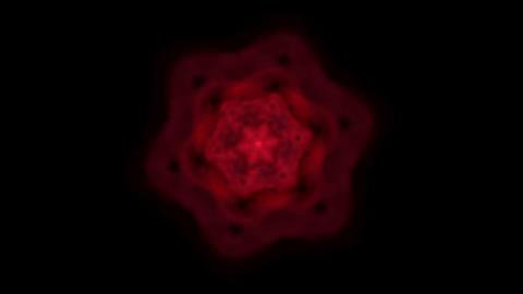 Dazzling flower pattern,seamless... Stock Video Footage