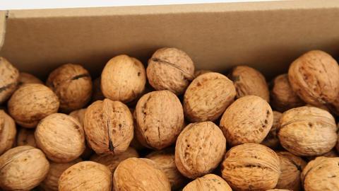 Walnuts in market ライブ動画