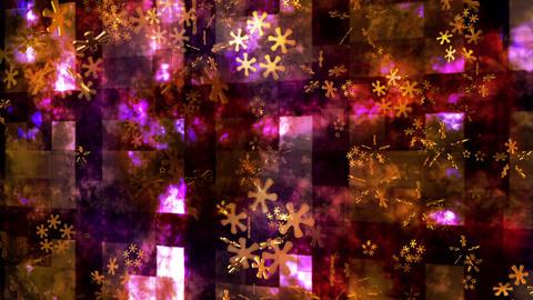 Broadcast Hi-Tech Flowers Travel, Golden, Events,... Stock Video Footage